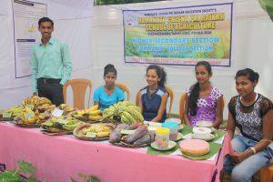 THE PASSIONATE-ABOUT-BANANAS LADIES: Nandita Akarkar, Jyotika Parab, Vasha Gawas, Riddhi Naik...there is more to the humble banana than you know!