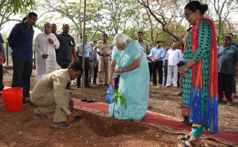 IT'S A MANGO TREE FOR GOA GOVERNOR MRIDULA SINHA: It was World Environment Day on June 5, when politicians of various denomination ceremoniously planted new trees to replace the ones cut down en masse during the year to make way for more urbanisation. Mridula-ji chose to plant a mango sapling at the Raj Bhavan grounds so that when it grows up it will offer an annual harvest of mangoes for somebody to enjoy…good thought this!
