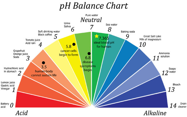 WHEN DID YOU LAST CHECK YOUR BODY'S pH VALUE?