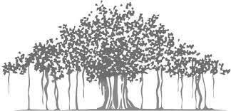 'BANYAN TREE: Working under Rajan'