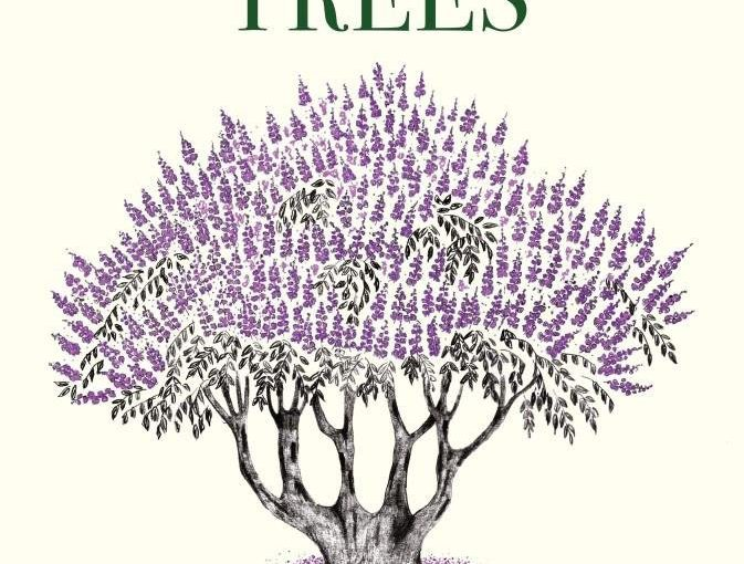 TREES ARE SOCIAL BEINGS!