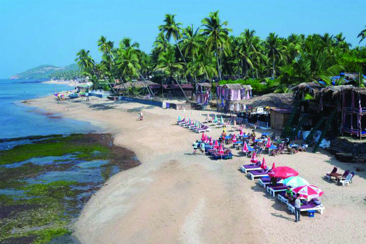 NGT REFUSES TO CLEAR SHACKS ON THE BEACHES!