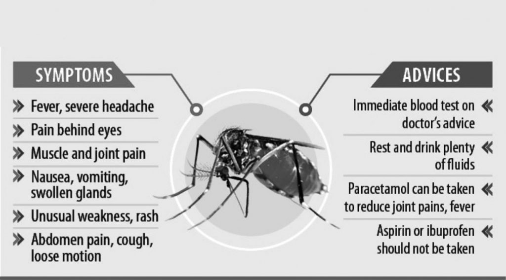 All about Dengue Fever