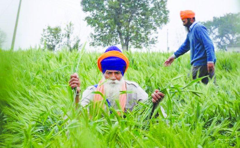 NEW LAWS WILL RUIN FARMERS!