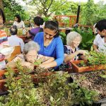 HORTICULTURAL THERAPY AND HEALING!